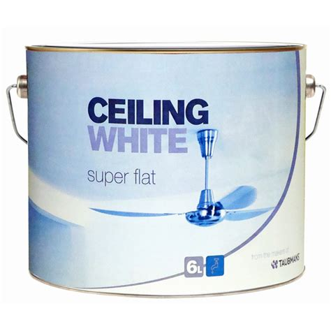 Flat White Ceiling Paint by Taubmans 6l Flat White Ceiling Paint Bunnings