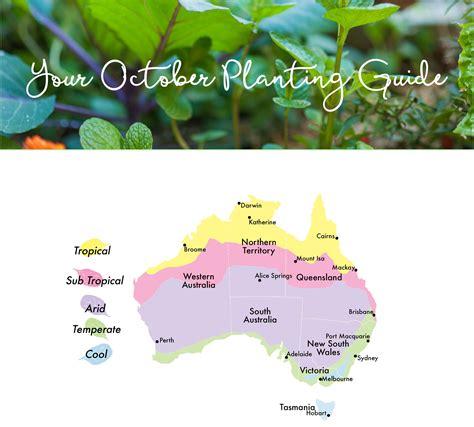 edible planting guide october australia vege garden