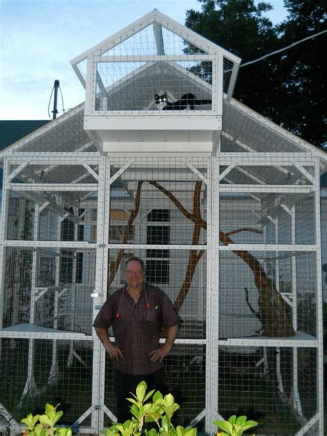Kandang Kucing Well Cage 1000 images about catio s on