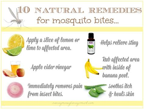 Home Remedy For Mosquitoes by 25 Unique Mosquito Bite Remedies Ideas On Bug