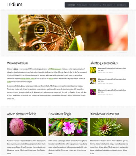 simple html5 templates free simple clean free html5 template templates