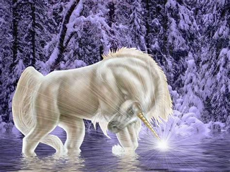 imagenes de animales unicornios pante 243 n de juda unicornios wallpapers imagenes