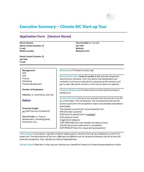 Executive Overview Template by 30 Executive Summary Exles Templates
