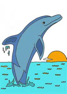 what color is a dolphin dolphin paint by number dolphin facts and information