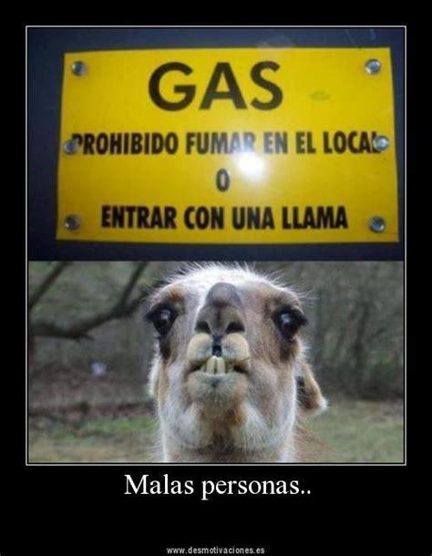 imagenes comicas mexicanas frases chistosas mexicanas imgenes con frases graciosas memes