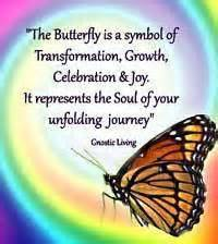 when soul is transforming wisdom from the of the soul books butterfly transformation quotes best daily quotes