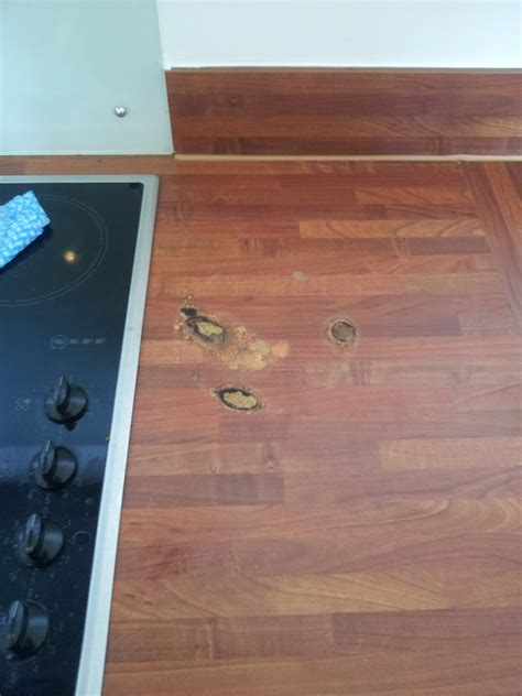 how to fix scratched and creaky floorboards repairing wood floors 100 how to stop squeaky hardwood