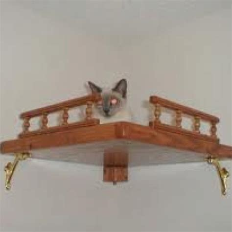 Corner Cat Shelf by Corner Cat Shelf Cat Toys Beds Hideaways