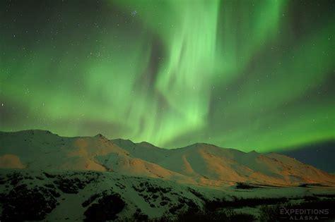 northern lights alaska of year expeditions alaska favorite photos 2016 wildlife photos