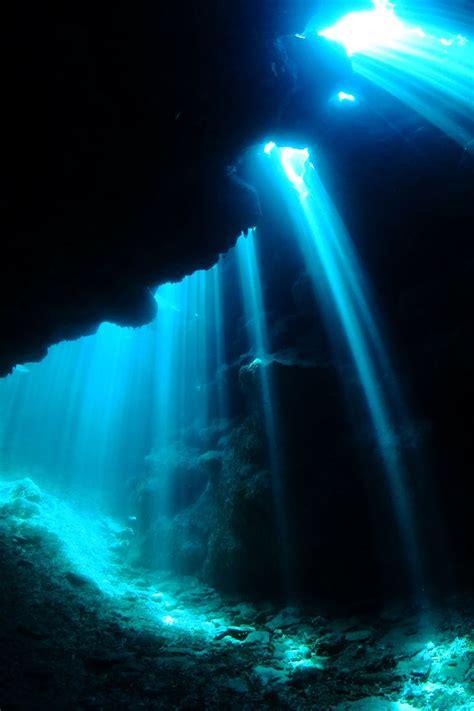 fuji underwater 77 best fujifilm x underwater images on
