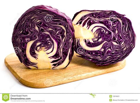 Hiltons Time Cut In Half by Of Cabbage Cut In Half Stock Image Image 12918021