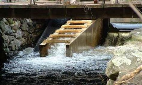 design of fishways and other fish facilities books fish passage community at umass amherst of