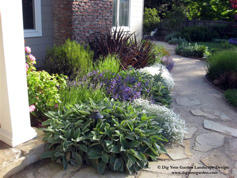 plant combinations northern california gardens
