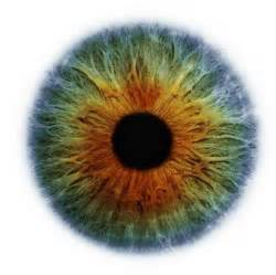 iris eye color cool pics cool pictures cool photos cool images