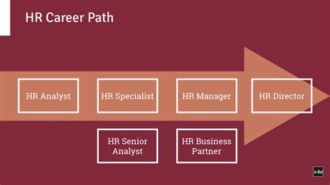 Mba Operations Management Career Path by Human Resources