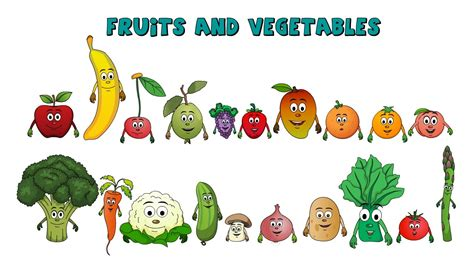 v fruits and vegetables learn about fruits and vegetables fruits and vegetables
