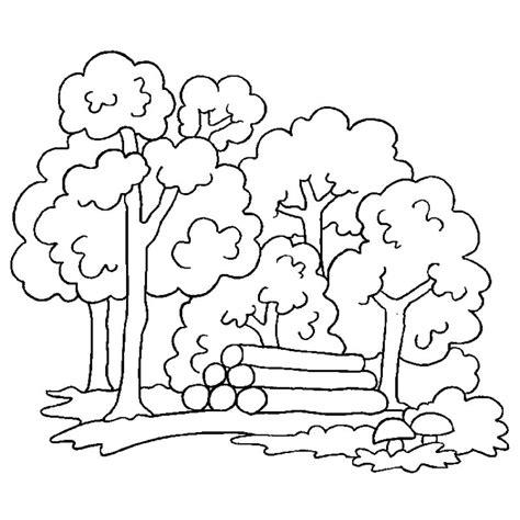 imagenes para dibujar naturaleza dibujos de naturaleza 174 para colorear e imprimir