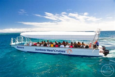 cairns glass bottom boat reef tours sl outer barrier reef pontoon moore reef ctic