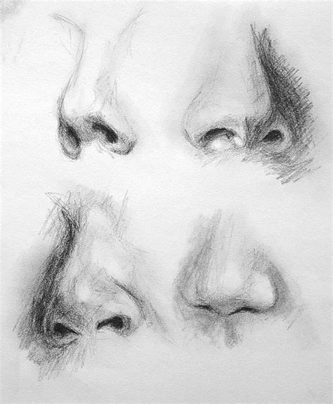 Sketches Nose by 1000 Images About Neus On Nose Drawing