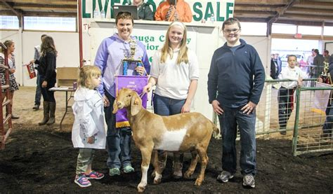 geauga county warden 2017 geauga county fair results farm and dairy