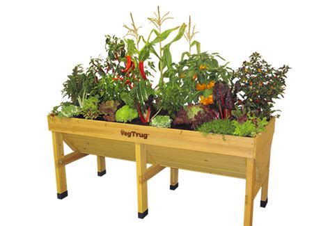 Vegetable Trug Planter by Grow Your Own Meal Endless Food Supply With Our Vegtrug