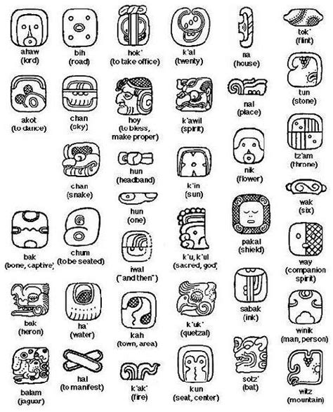 glyph tattoo history mayan animal symbols pictures mayan pinterest