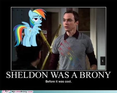 Know Your Meme Brony - image 194983 my little pony friendship is magic