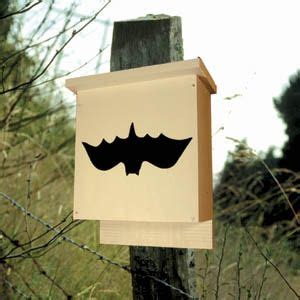 pattern for bat house 44 best images about birdhouse woodcraft patterns on