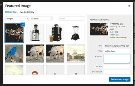 wordpress themes thumbnail gallery where is the course that explains how to implement the