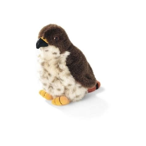 red tailed hawk audubon stuffed animal with bird song
