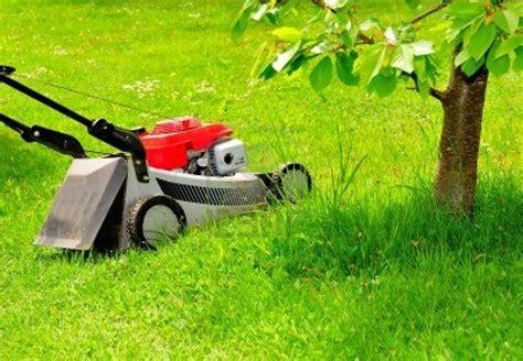 Landscaper Lawn Mower Check List Garden Supply Co