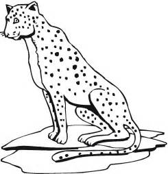cheetah coloring page free printable cheetah coloring pages for