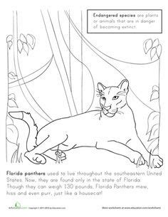 key deer coloring pages key deer coloring pages john deere coloring pages