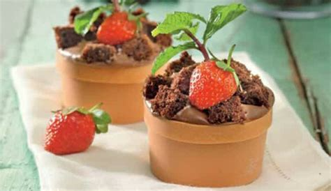 cara membuat ice cream flower pot resep kue pot bunga flowers pot cake resep hari ini