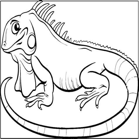 imagenes para pintar iguana dibujos de reptiles animales vertebrados colorear y pintar