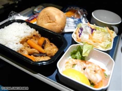 Special Edition Travel Dining Tray in flight food heaven or hell on a tray cnn