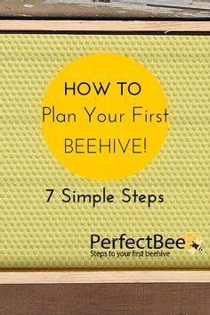 how to raise bees in your backyard sugar boards for feeding bees during the winter make