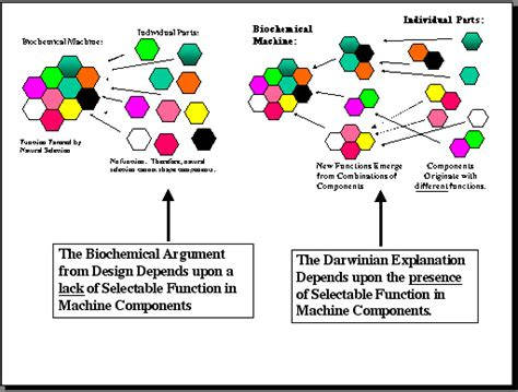 pattern component theory of evolution intelligent design theory science or religion page 187