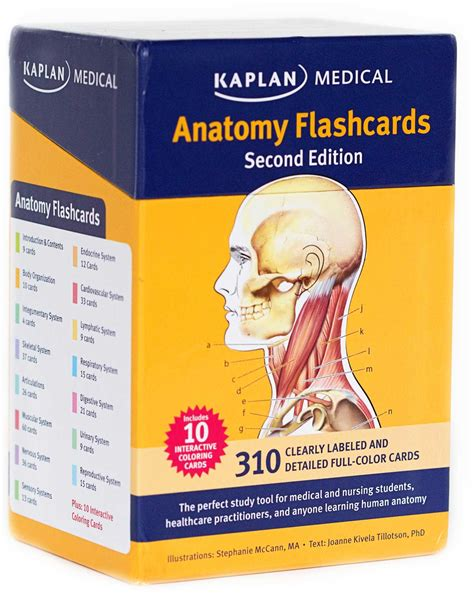 printable flash cards anatomy and physiology anatomy flashcards book summary video official