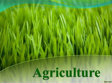 Agriculture Powerpoint Template agriculture authorstream