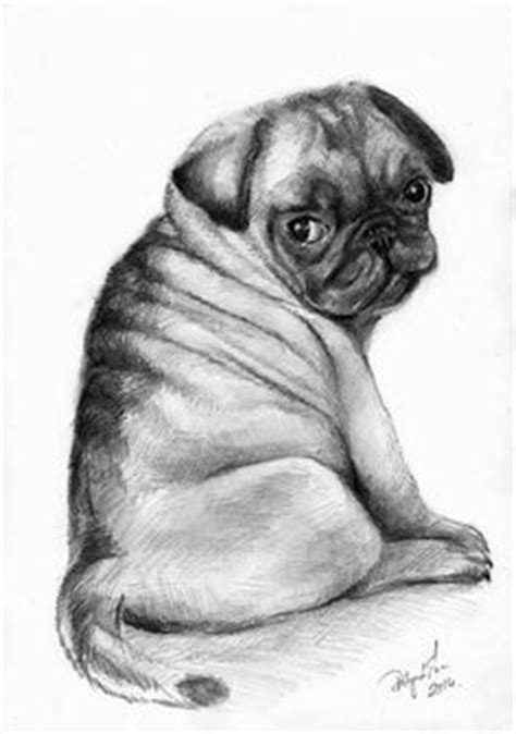 pug sketch pug puppy ink drawing embellished miniprint pug puppys and dr who