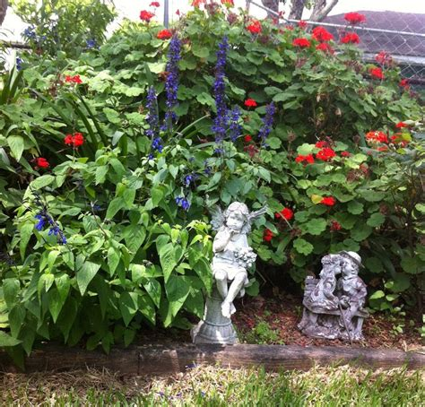 Emily S Garden by 1000 Images About Gardening By Emily On