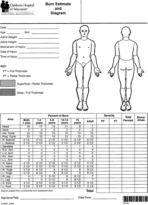 pediatric feeding evaluation template wiring diagrams