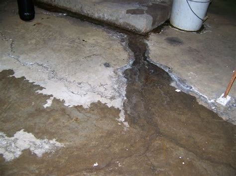 What Causes Basement Moisture in Franklin IN?   EverDry