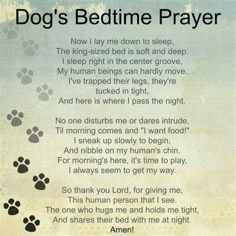 puppy prayers 25 best ideas about poems on miss my loss quotes and