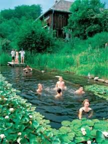 Natural Pool by Top 10 Stunning Natural Pools Top10