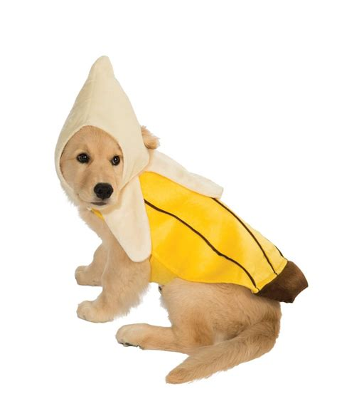 banana for dogs top 20 best costumes for in 2017 heavy