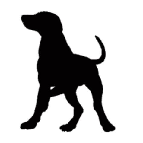 why do pomeranians bark so much bark noise mp3