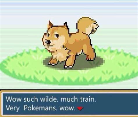 Doge Sex Meme - doge pokemon weknowmemes