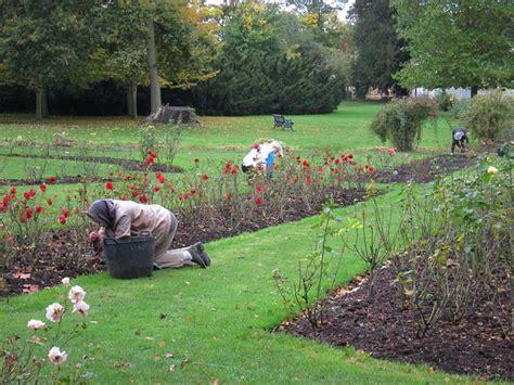 il giardino te giardino fai da te giardinaggio decorazione giardino